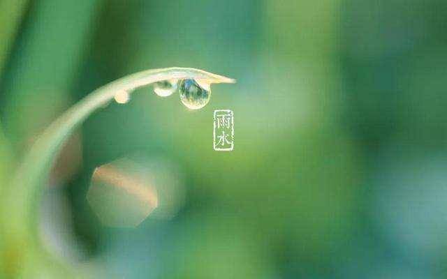 雨水养生:春寒多雨水,疏肝调脾胃