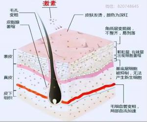 脸部过敏发红痒,吃过敏药,可以治好激素依赖性皮炎么?