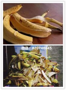 """梅花点香蕉皮是天然的美白""""灵药""""?能用来消除激素皮炎皮肤暗沉,肤色不均,色斑等症状吗?"""