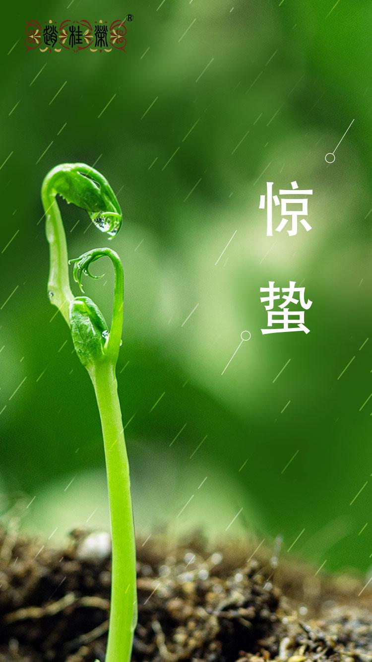 二十四节气之惊蛰:春回大地,陌上花开!